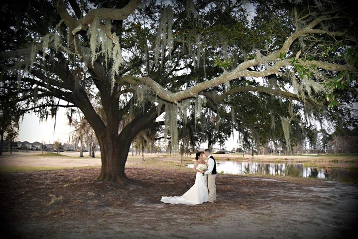 Newly married bride and groom kissing under tree